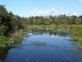 Wakodahatchee FL